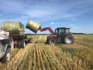 The Lundar Ag Society 2nd Annual field harvest fundraiser